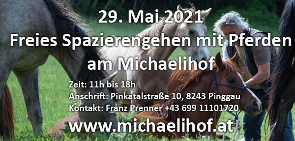 20. Mai 2021 - Freies Spazierengehen mit Pferden am Michaelihof in Pinggau/Stm. - Info: https://www.michaelihof.at  -  0699-11101720